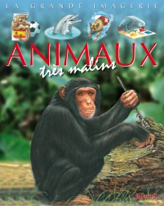 animaux-tryis-malins_01