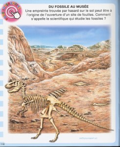 imagerie-dino-prehist-interactive0005_01